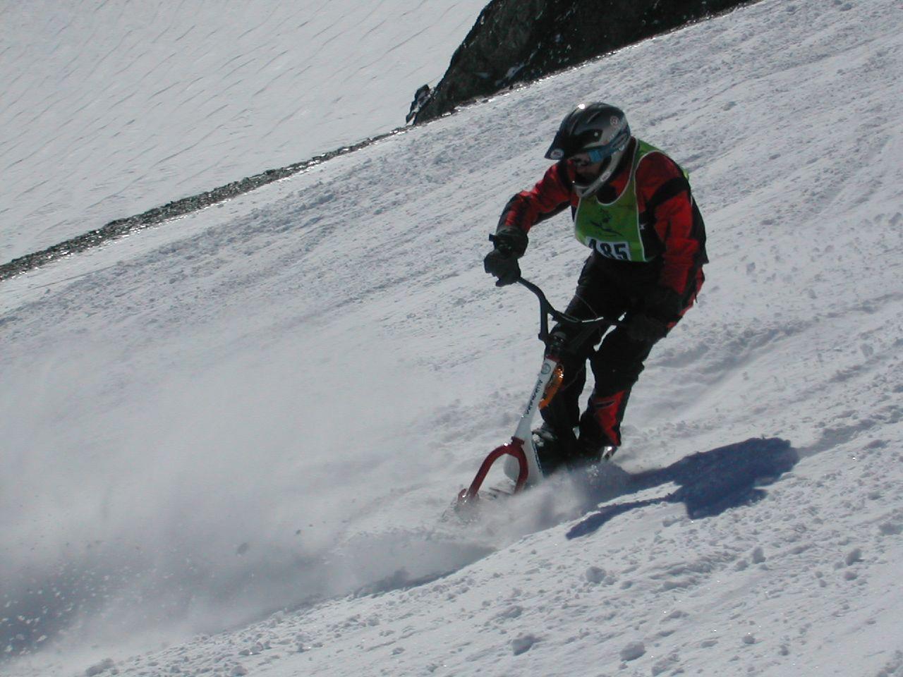 Descente en snowscoot (compétition)