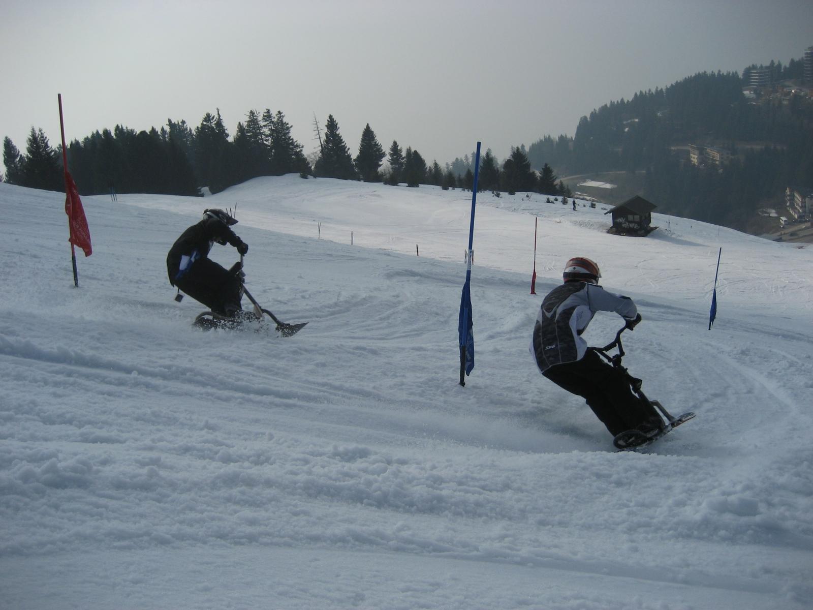Dual slalom de snowscoot